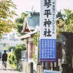 琴平神社看板